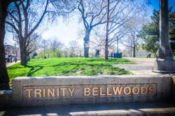 Trinity Bellwoods Dog Park